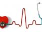 EKG- és laborvizsgálat