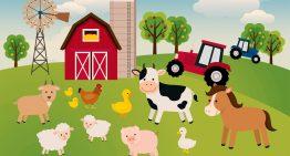 Az állattartók állatokkal kapcsolatos nyilvántartási kötelezettségeiről